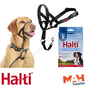 Halti Head Collar Dog Training Obedience Stop Pulling on Lead No Pull Solution