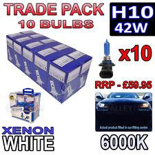 10 X H10 bombillas halógenas 42w Xenon Blanco 6000k-comercio A GRANEL MAYORISTA 10 Pack Niebla