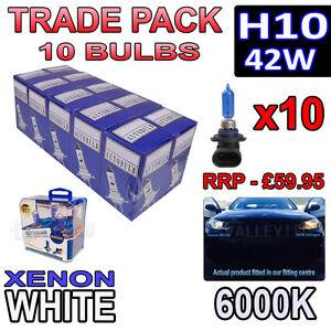 10 x H10 42w Xenon White Halogen Bulbs 6000k - Trade Bulk Wholesale 10 Pack Fog