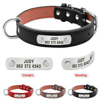 Hundehalsband Personalisiert Lederhalsband Katze Hund Halsband Hundenamen S M L