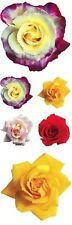 ~ Roses Rose Multi Colour Red Yellow Photo Paper House StickyPix Stickers ~