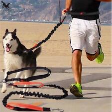 Dog Leash Running Elastic Waist Pet Belt Jogging Free Hands Lead Rope Walking
