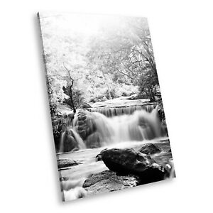 SC438 Black White Portrait Canvas Picture Print Wall Art Forest Waterfall Cool