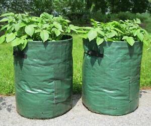 2 x Potato Grow Bags veg bag planter