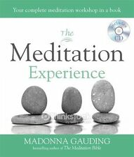 The Meditation Experience: Your complete meditation workshop in a book (Godsfi,