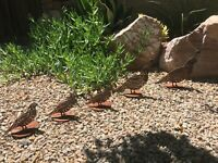 Rustic Quail Family Metal Yard Art Rusted Farmhouse Landscape Garden