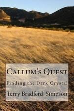 Callum's Quest by Terry Simpson (2013, Paperback)