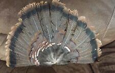 Handmade Real Turkey Feather Fan Beautiful
