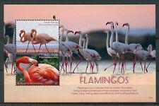 St Vincent & Grenadines 2017 MNH Flamingos 2v S/S Greater Flamingo Birds Stamps