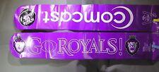Reading Royals/Comcast ECHL Hockey Thunder Sticks (boom boom sticks) !