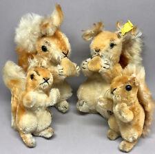 Steiff Eichhorn Squirrel Possy x 4 Mohair Plush one ID Button 14cm 20cm 1950 60s
