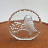 Viking Round Clear Glass Owl Paperweight