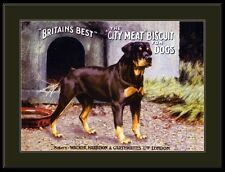 English Print Rottweiler Dog Dogs Puppy Puppies Advertisement Art Vintage Poster