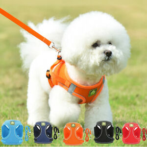Pet Dog Cat Harness Leash Kit Dog Reflective Puppy Chest Strap Soft XS TO XL