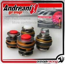 Kit Pistoni Pompanti Forcella Compr+Est Andreani Honda CB1000R 2008 08>
