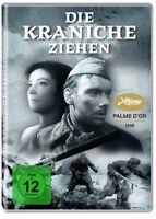 DIE KRANICHE ZIEHEN (REMASTERED) -  KALATOSOV,MICHAIL   DVD NEU