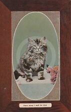 """CAT """"Here Alone I wait for Thee"""" Arlette Glazette Series 174 Postcard"""