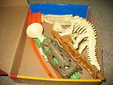Used Hot Wheels Dino Backbone Slide, Car is not included.  In box.