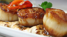 Get Maine Lobster - 4lbs Fresh Maine Scallops w/ FREE SHIPPING