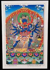 CARTE POSTALE CHAKRASAMVARA NEPAL TIBET DEITE BOUDDHISTE-8339