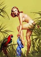 "Vintage GIL ELVGREN Pinup Girl CANVAS ART PRINT Poster ~ Macaw & Girl 8"" X 12"""