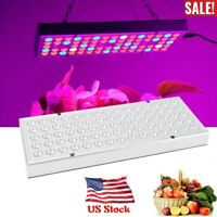 1000W Full Spectrum 75LED Grow Light For Indoor Tent Greenhouse Hydroponic Plant