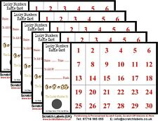 Lucky Numbers Fundraising A6 Raffle/Scratch Cards (10 x 30 Numbers), New