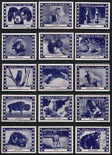 "Twenty Vintage ""ANIMALS OF CANADA"" Poster Stamps"