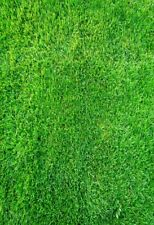 Green Grass Board 5x7FT Wall Studio Background Vinyl Props Photography Backdrop