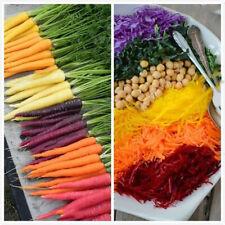 100Pcs Rainbow Carrot Vegetable Seeds Rare 6 Kind Bonsai Organic Healthy Kitchen
