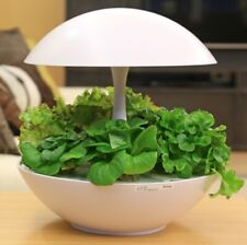 Akarina - Hydroponic Indoor Grow-Light System Integrated With LED technology