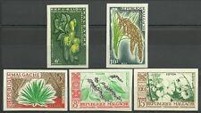 MADAGASCAR PLANTES FLORE RIZ SISAL COTON RICE NON DENTELES IMPERFS ESSAY ** 1960