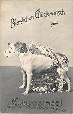 B98473 geburtstag birtday dog with basket and letter germany  animal animaux