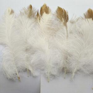 Rare Natural Fluffy Golden Eagle Velvet Feathers DIY Home Decor Craft Ornament