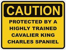 Chien race cavalier king charles spaniel prudence autocollant animal pour pare-chocs porte voiture