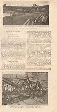 1900 ANTIQUE PRINT - BOER WAR- CHRONICLE OF THE WAR, OVER 2 SIDES WITH PICTURES
