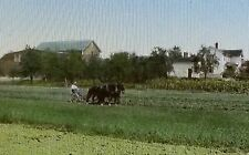 1924, Horse Drawn Plow North of Seneca, New York, Magic Lantern Glass Slide