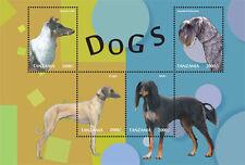 Tanzania-2014-Dogs