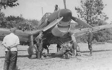 WWII B&W Photo Junkers Ju87 Stuka Front View World War Two Luftwaffe  WW2 / 6105