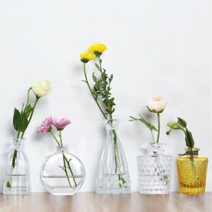 Decorative Flower Vase Small Table Clear Glass Bud Art Vases Modern Centerpieces