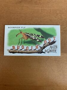 2020 Allen & Ginter Mini Buggin Out MBO9 Scorpion Fly