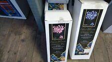 Cherry Blossom outdoor Tree Pink