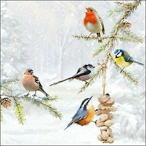 4 Individual Winter Birds Decoupage Napkins for decoupage, table or party