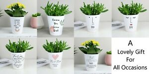 Personalised Plant Pot Choose Design Any Occasion