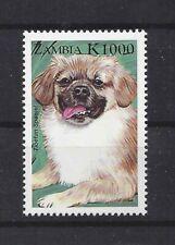 Dog Art Head Study Portrait Postage Stamp Tibetan Spaniel Zambia Mnh
