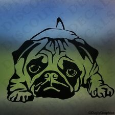"PUG 12"" large dog decal sticker WHITE car truck SUV die cut vinyl"