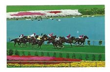 Vintage Postcard Hollywood Park Horse Racetrack Thoroughbred Racing Turf Course