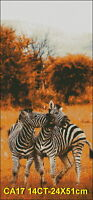 Zebras Playing counted cross stitch pattern DMC,PDF, EMAIL SHIP