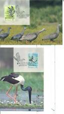 Uccelli: Cartoline Maximum Australia 1991 (Nuove)