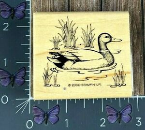 Stampin' Up! Duck Swimming on Pond Bird Rubber Stamp 2000 Wood Mount #J115